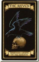 raven200