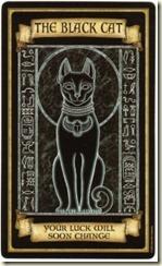 blackcat200